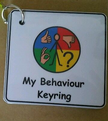 Behaviour Keyring - Visual Support/Aid for ASD/Autism/Learning Difficulty