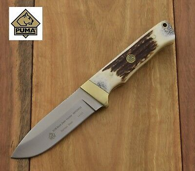 PUMA SGB Mule Deer Hunter Stag  Knife  Stainless Hunting Knives 6810040S