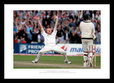 Andrew Flintoff Celebrates Ashes 2005 England Cricket Photo Memorabilia (495)