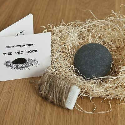 Pet Rocks with Hay Walking Leash Silly Gag Gift in 5 Styles