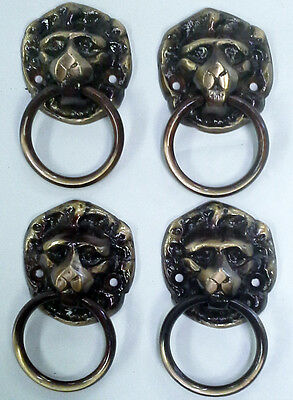Solid Brass Lion Ring Pulls Set of 4