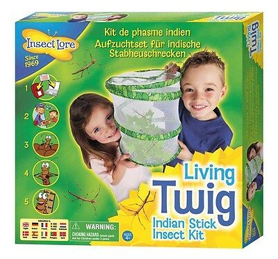 Stick Insect Kit STYLE A