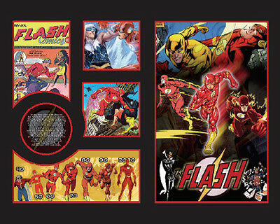 New The Flash Comics Limited Edition Memorabilia Framed