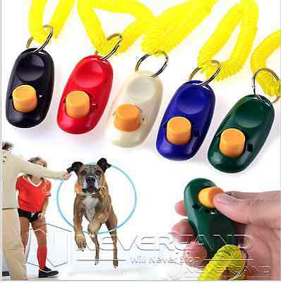 Clicker Training Agility dressage animaux chien chat récompense