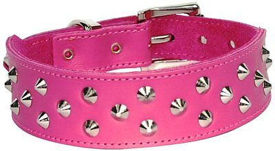 Designer Dogue Stud Muffin Dog Puppy Collar Genuine Leather choice colour size
