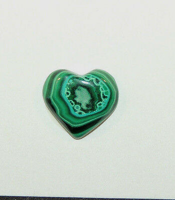 Malachite and Chrysocolla Heart Cabochon 16x15mm with 5mm dome  (9710)