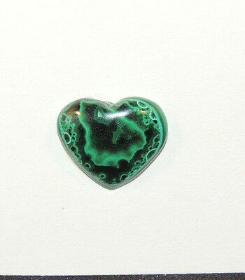 Malachite and Chrysocolla Heart Cabochon 14x17mm with 4mm dome  (9712)