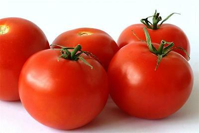 Seeds Tomato Flora Ukraine Heirloom Vegetable Seeds