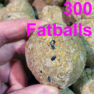 300 x Suet Fatballs Netless Wild Bird Food High Energy Contains Black Sunflower