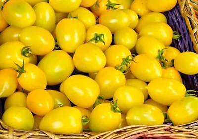 Tomato Seeds Golden strem Ukraine Heirloom Vegetable Seeds