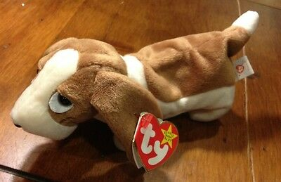 Ty Beanie Baby Tracker with Tag Error.  FREE SHIPPING!