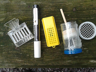 White Marking Pen with Queen Marking Set