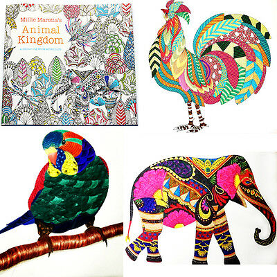 Secret Garden An Inky Treasure Hunt and Coloring Book by Animal Kingdom &Pencil