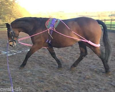 NEW Horse Lunging Training Aids pe-ssoa based PINK one size fits all £19.99