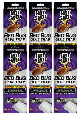 24 Count Hot Shot Early Bed Bug Infestation Detector Glue Trap (24 Traps)