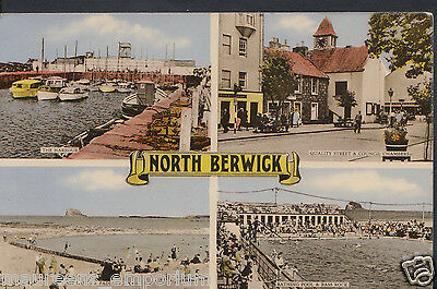Scotland Postcard - Views of North Berwick   DR656