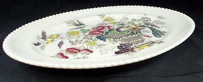 """Johnson Brother BIRD OF PARADISE BROWN MULTICOLOR 12"""" Platter A+ CONDITION"""