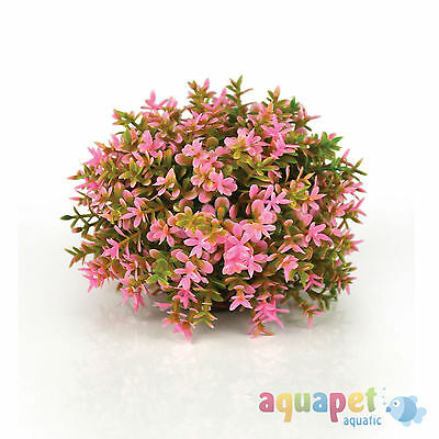 biOrb Coloured Topiary Ball Pink