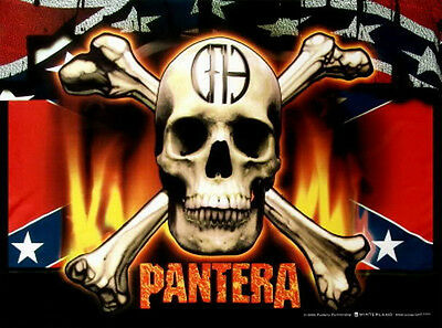 """PANTERA """"FLAG AND SKULL"""" Fabric Poster Oversized 30""""X40"""" Poster Flag NEW"""