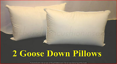 FEATHER & DOWN KING SIZE PILLOWS INSERTS 2 x 50% GOOSE DOWN 100% COTTON COVER