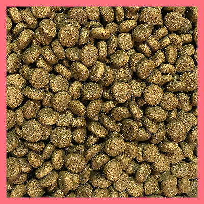 15Kg Salmon & Rice Sensitive Hypoallergenic Super Premium Adult Active Dog Food
