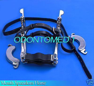 Stainless Steel Professional Horse Dental Speculum