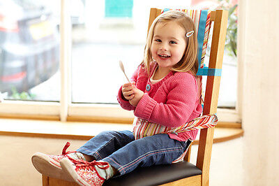 The Gro Company Gro Chair Harness (Jazz Stripe) Toddler/Child/Baby Harness