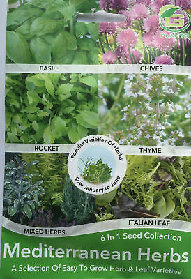 Mediterranean Garden Mixed Herbs Seeds Collection Pack Basil,thyme,chives,rocket