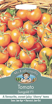Mr Fothergills Tomato Sungold F1 Seed