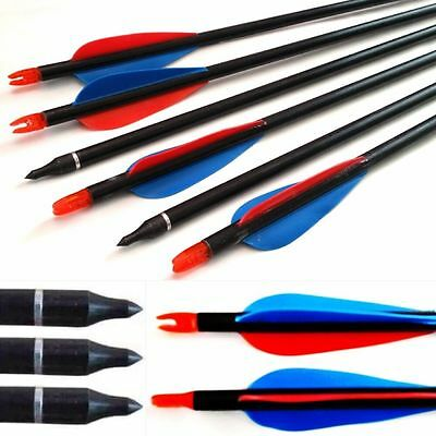 10 Archery Arrows With Screw Tip Broadhead Field & Target broadhead compatible.