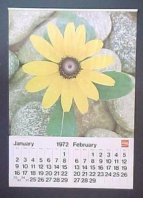 "Original 1972 Coca Cola Daisy Wall Calendar / New Old Stock / 18""  by 12 3/4"""