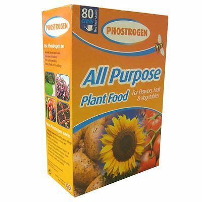 Pack Phostrogen Soluble Plant Food 800g (80 can) All Purpose Plant Food