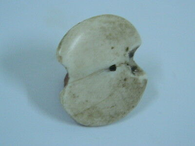 Ancient Shell/Bone Bead or Pendant Bactrian 300 BC  #BD15113 • CAD $12.54