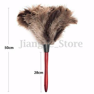 55cm Ostrich Feather Duster Brush Wood Handle Anti-static Natural Grey Fur Home