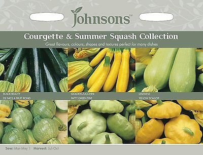 Johnsons Seeds Courgette & Summer Squash Seed Collection