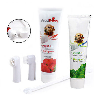 3 Brushes Pet Dog Cat Hygiene Health Teeth Care Toothbrush Toothpaste Kit Set