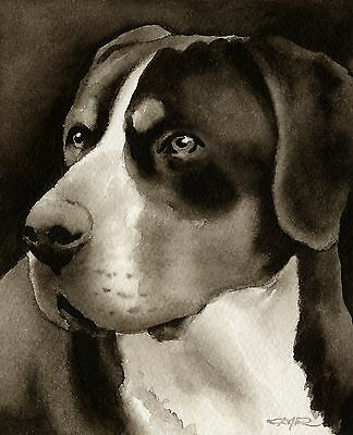 GREATER SWISS MOUNTAIN DOG note cards by watercolor artist DJ Rogers
