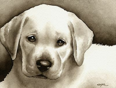 LABRADOR RETRIEVER PUPPY note cards by watercolor artist DJ Rogers