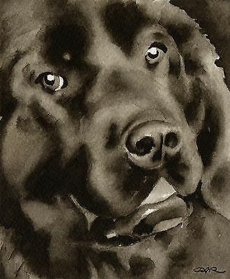 NEWFOUNDLAND note cards by watercolor artist DJ Rogers