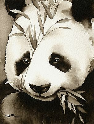 PANDA note cards by watercolor artist DJ Rogers