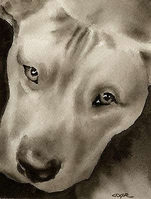 PIT BULL note cards by watercolor artist DJ Rogers