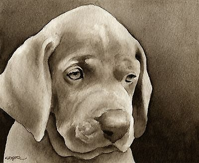 WEIMARANER PUPPY note cards by watercolor artist DJ Rogers