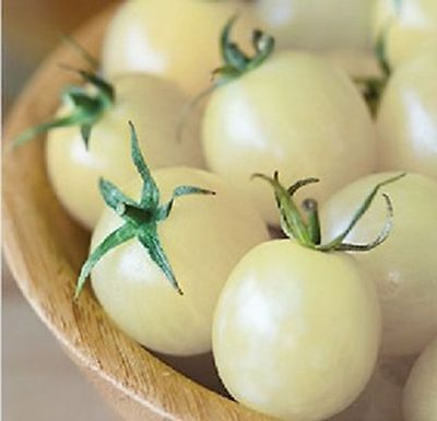 Tomato Seeds Cherry Snow Ukraine Heirloom Vegetable Seeds