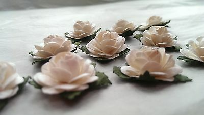 10 Single Roses-Mulberry Paper/Handmade/embellishment/craft/cardmaking/DR01WH