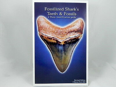 Megalodon Shark Tooth Identification Book Guide with Photos of Fossil Teeth