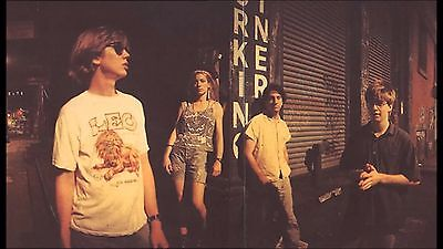 Sonic Youth Kim Thurston Lee Band 8X11 Photo Poster Art Picture Decor Print 019