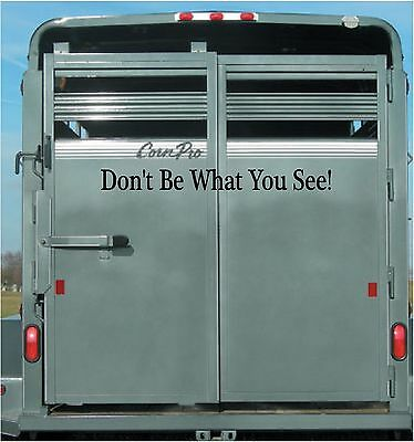 Don't Be What You See! Vinyl Decal Stickers Horse Trailer Back Decals Lettering