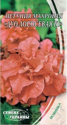 Petunia Salmon F1 Flower Seeds from Ukraine