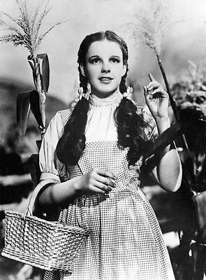 Judy Garland The Wizard of Oz Quote Word Movie Toto Canvas Gift