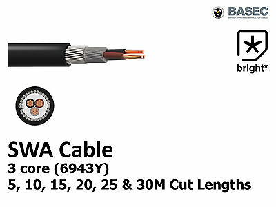 SWA Steel Wire Armoured 6943Y Cable 3core 1.5, 2.5, 4, 10, 12, 16, 25mm Outdoor